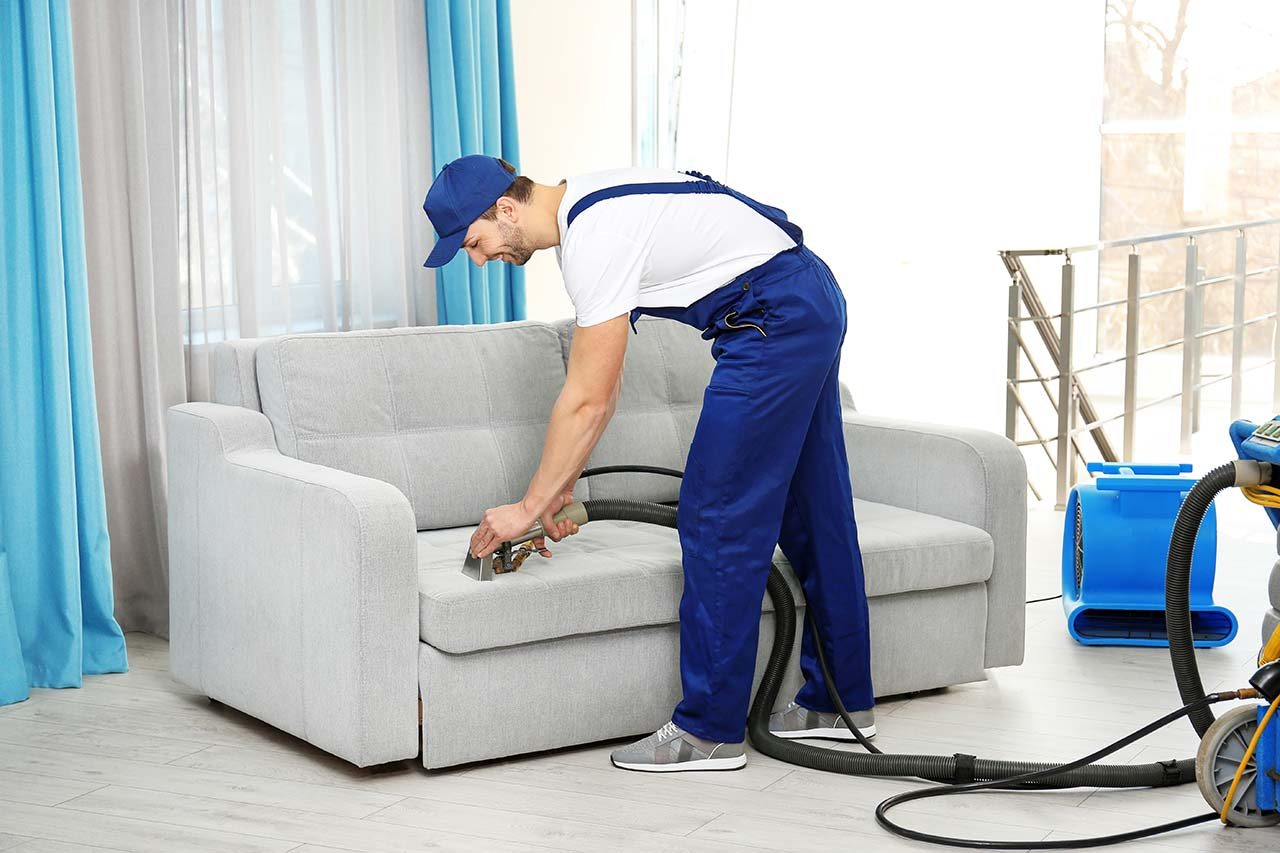Green Carpet Cleaning Brooklyn   Get 20